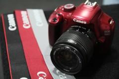 canon d1100.jpg